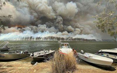 Australian Bushfire donation hacking response